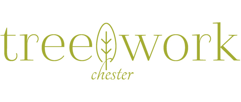 Tree Work Chester